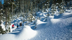 Adventure Package - Snowshoeing