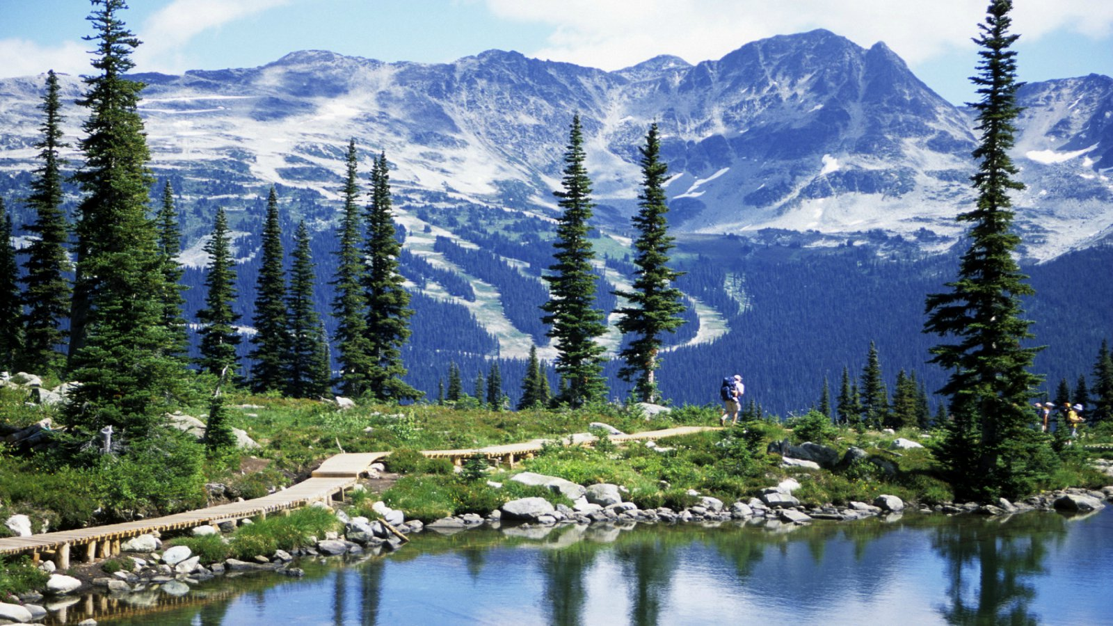 Nature - Mid-Week Savings - Whistler Package